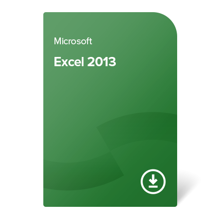 EXCEL13